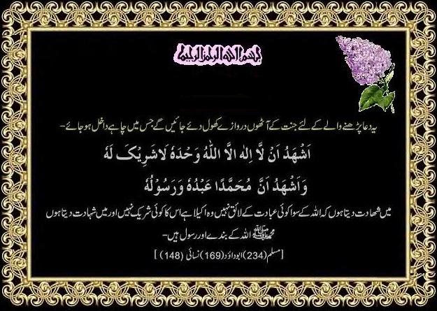 Tazkia - Tasawwuf - Islamic Lectures - Bayanat - Aqaed